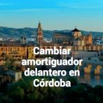 Cambiar amortiguadores en Córdoba